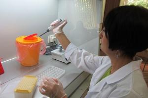 В Калининградской области впервые начинаются исследования на скрытые инфекции сельхозрастений