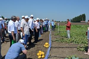 Российско-китайская лаборатория по селекции семян риса и овощей появится в Краснодаре