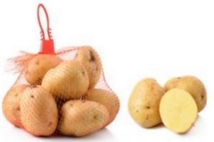 В Челябинской области объединят селекцию и производство картофеля