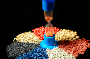 Syngenta хочет производить больше семян в России