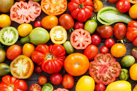 Год тюрьмы за незаконное размножение сортовых томатов