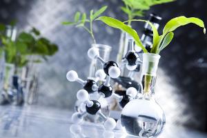 Передача молекулярных средств селекции от Bayer