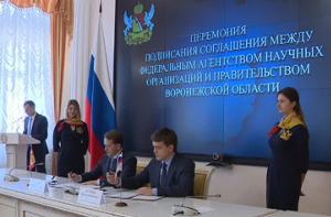 Воронежская область привлечет молодежь в селекцию и семеноводство