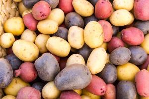 «Уральский картофель» получил 93,5 млн рублей