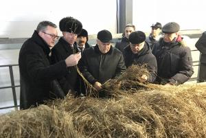 В фокусе внимания: производство льна в Вологодской области