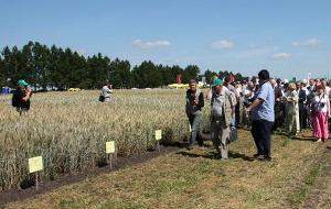 Аграрная неделя в Орловской области