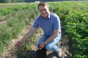 ВИР показал генетические ресурсы картофеля