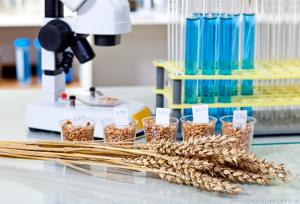 Перспективы агрономической науки