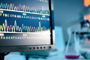 Биоинформатика и регуляция структуры геномов