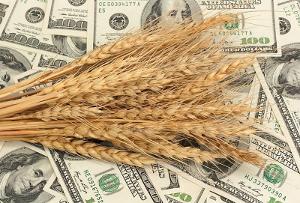 Повысить урожайность при минимуме удобрений