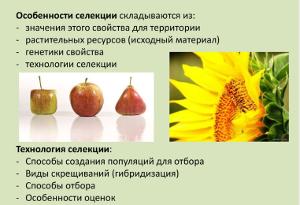 Селекция и биотехнология