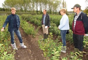 Мичуринские яблони прижились во Франции