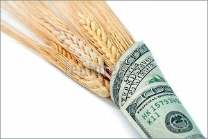 10-кратное увеличение торговли семенами