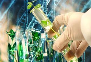 Как работает механизм защиты растений?