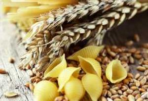 Где найти семена пшеницы для пасты?