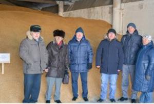 Больше внимания твердой пшенице