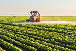 Рынок пестицидов