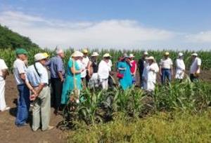 Кубанской опытной станции — 95 лет