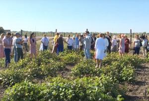 Астраханская ОС провела День поля