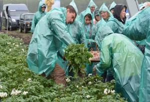 Семинар по картофелю в Южно-Уральском НИИСК