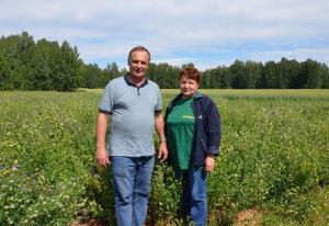 Растет спрос на семена трав из Свердловской области