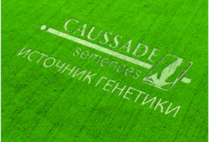Французскую генетику апробируют в Оренбургской области