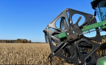 Зерна без плевел