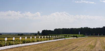 День поля в Липецкой области