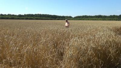 Под Воронежем вывели новые сорта пшеницы и ячменя