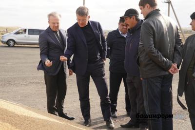 Развитие семеноводства в Башкортостане