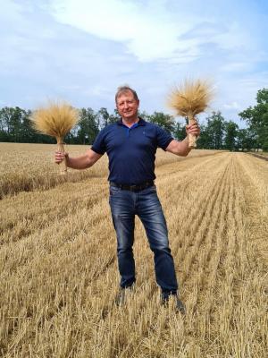 Твердой пшенице особый статус