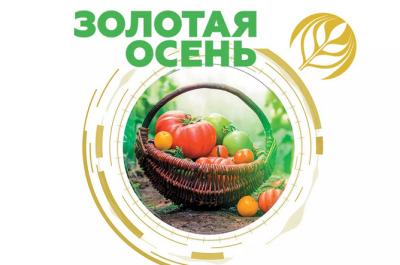 Мероприятие «Золотая осень — 2020»