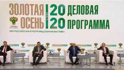 ЗОЛОТАЯ ОСЕНЬ-2020
