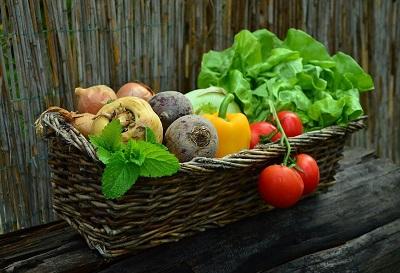 О совершенствовании технологий выращивания семян