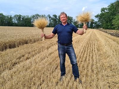 О твердой пшенице и дуруме