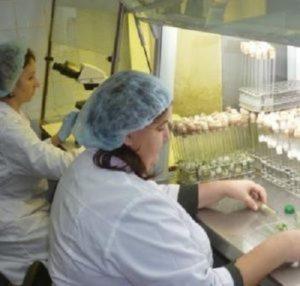 Омская лаборатория для качественных семян