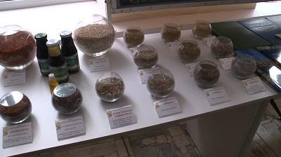 Состоялся международный семинар для семеноводов