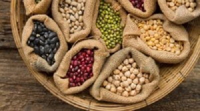 «Сибирские семена» объединяют специалистов-аграриев