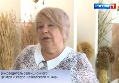 Селекционеры Ставрополья представили новые сорта пшеницы