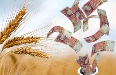 Потерпел неудачу проект с ГМО
